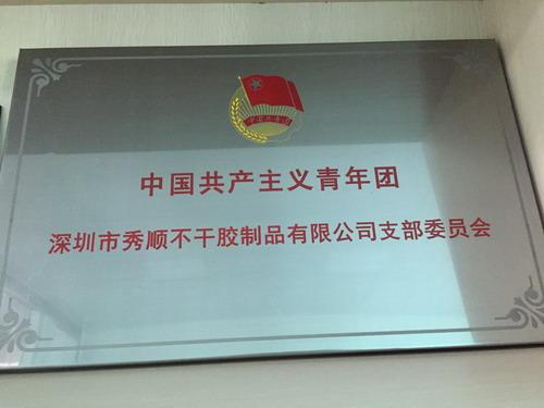 中国共产主义青年团支部委员会